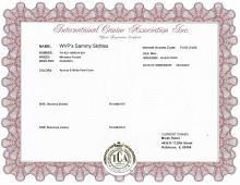 Official Registration Certificate