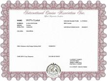 ICA Official Registration Certificate